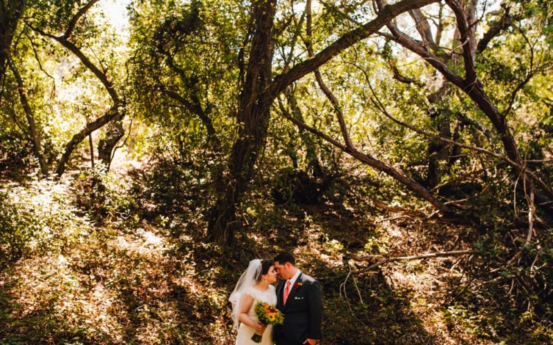 Hannah & Bradford | Oak Canyon Nature Center Wedding Photographer