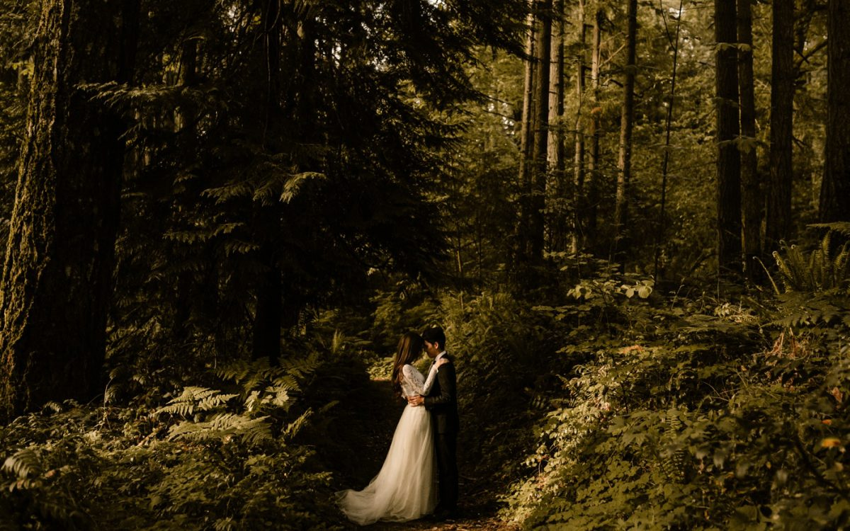 PNW Forest Elopement | Olympia, WA