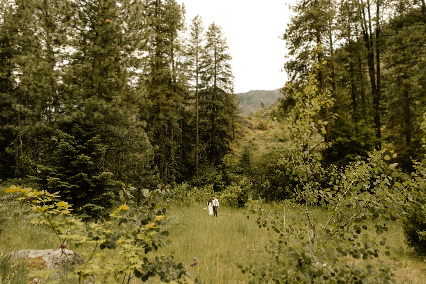 Washington elopement photographer open field in the mountains