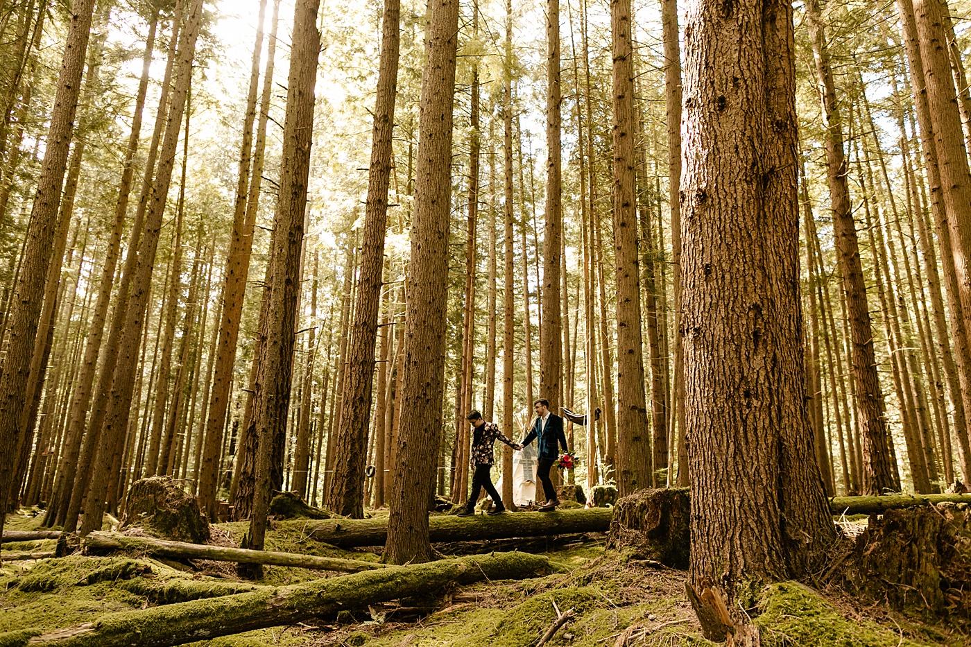 Washington Micro Wedding locations to elope in the woods washington