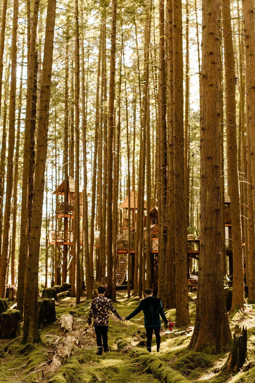 treehouse wedding venue Washington Micro Wedding