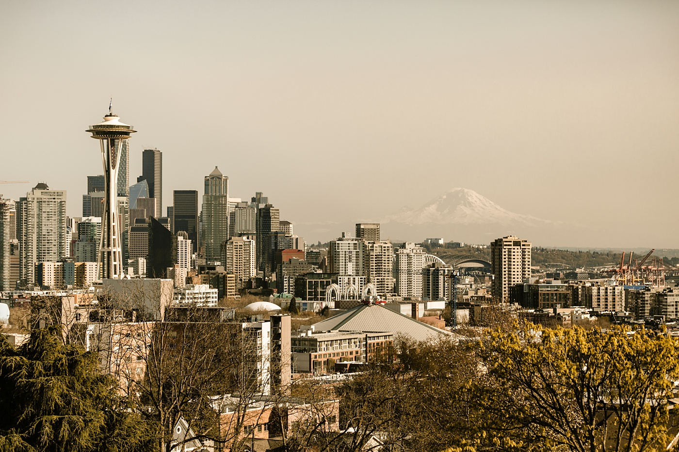 seattle city skyline with space needle and mount rainier