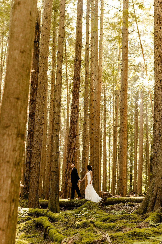 The emerald forest wedding photographer, elopement venue, best washington photographer, How To Choose The Best Wedding Vendors