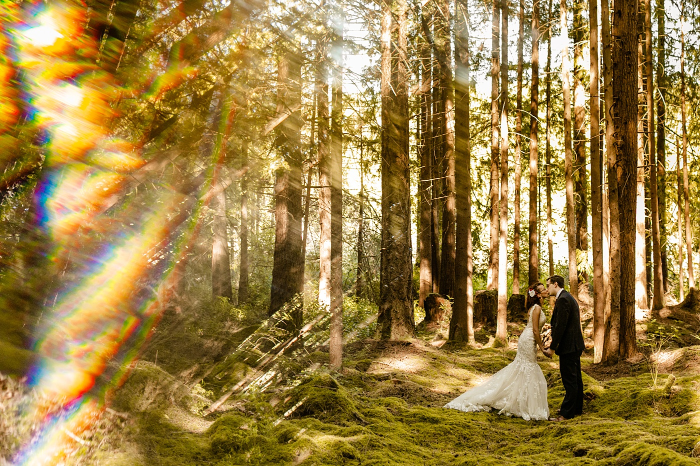 the emerald forest wedding photographer tminspired photography, redmond washington, How To Choose The Best Wedding Vendors