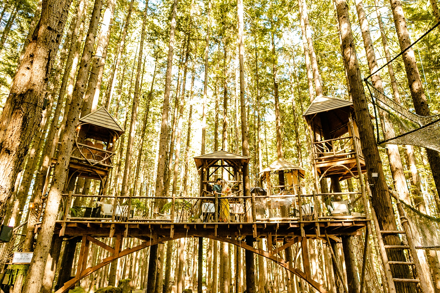 treehouse theater in the forest