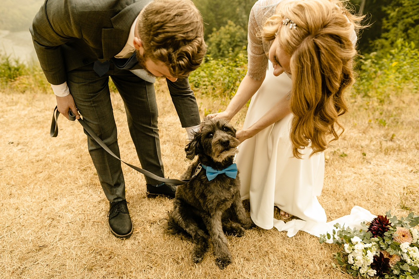 Seattle's Best Airbnb's for Elopements dog friendly